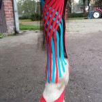 Medical Taping Osteopathie paard