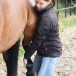 Linda Limburg Unitas osteopathie paarden